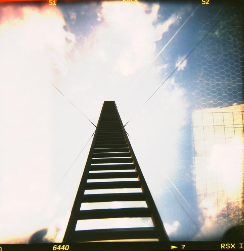 image - Flickr / pierpaolo p