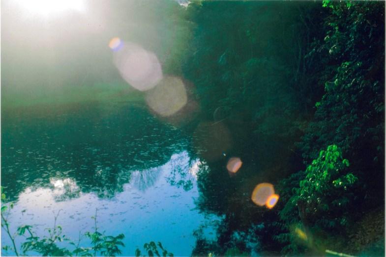 Clara Araujo / Flickr.com.
