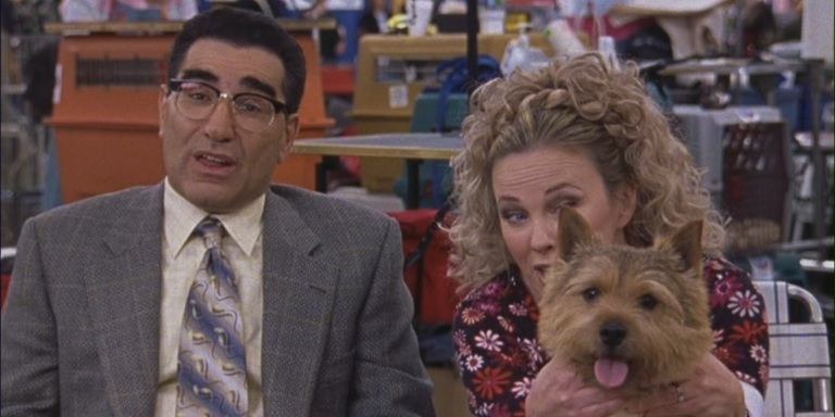 18 Signs You Like Animals Way More ThanPeople