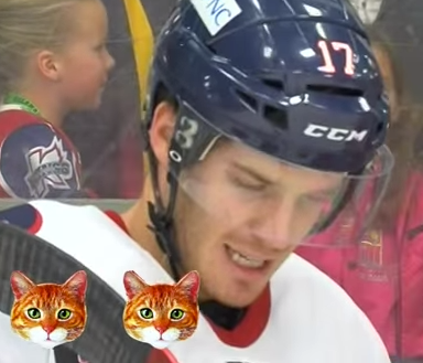 "How Many Interview Questions Can This Hockey Player Answer With ""Meow?"""