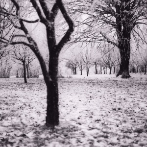 4 Ways To Beat Winter Depression