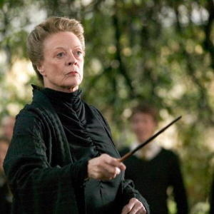 10 'Harry Potter' Spinoffs That Should Definitely Happen