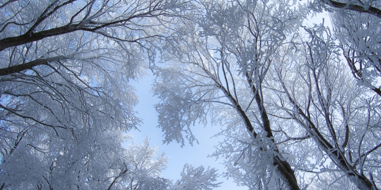 20 Emotions Only People Who Love Winter WillUnderstand