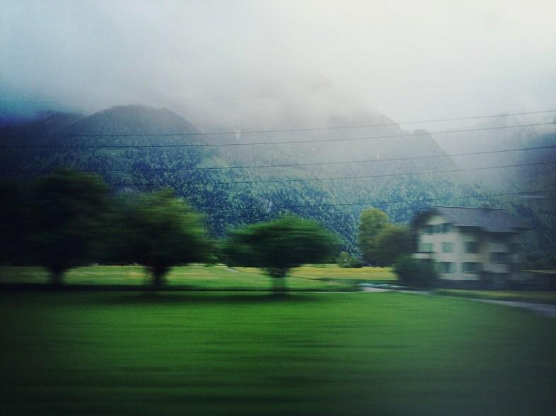Flickr/Alagich Katya