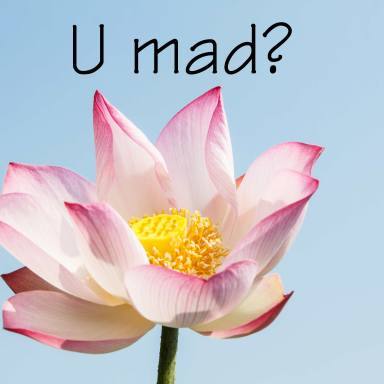 21 Passive-Aggressive Comments Illustrated With Flowers