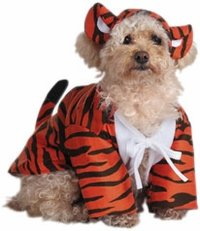 Pet Raja The Tiger Dog Costume For Large Dogs (Amazon)