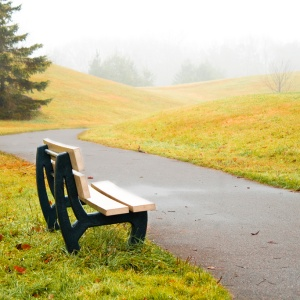 How I've Learned To Be Alone And Comfortable