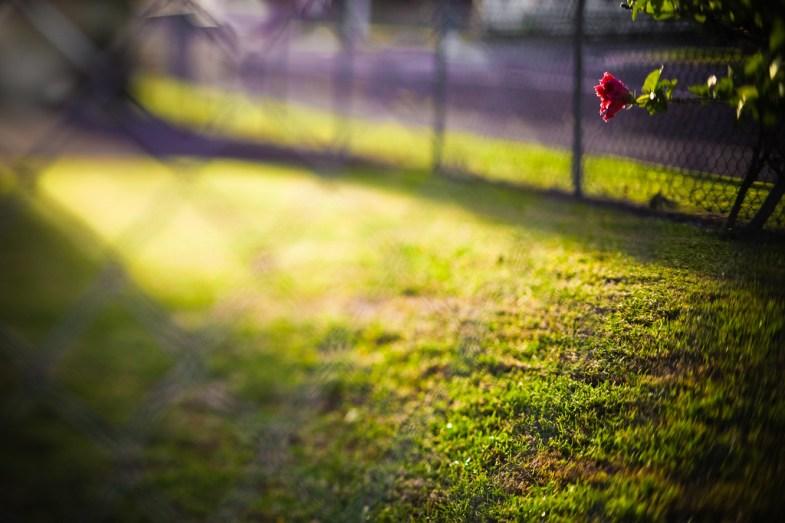 Flickr/Aftab Uzzaman