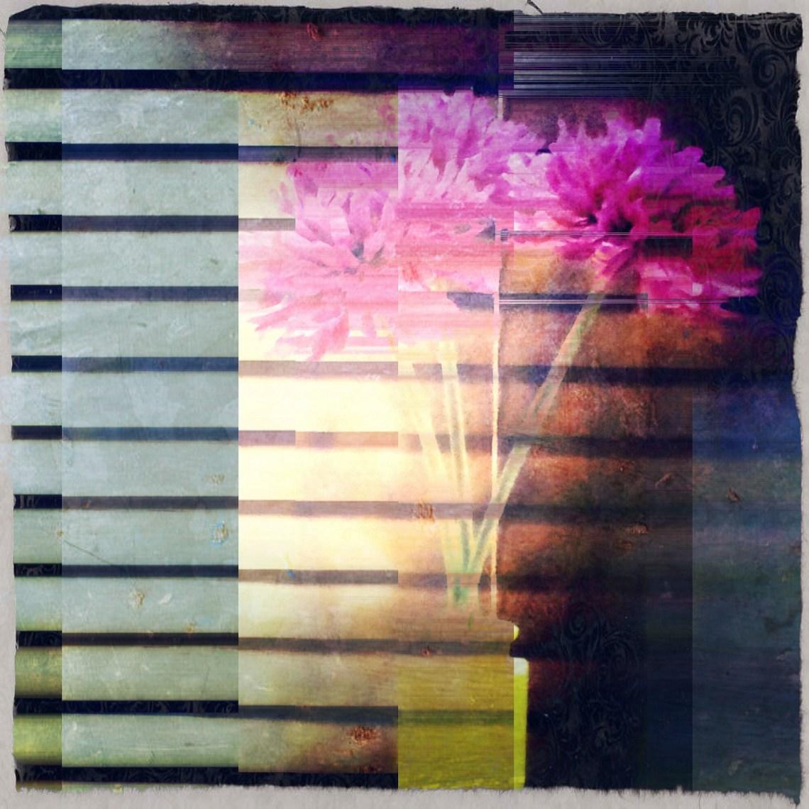 Flickr / gilliannb