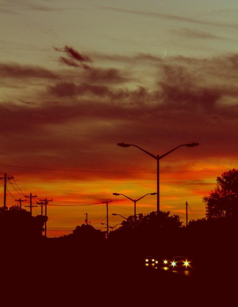 Flickr / Lotus Carroll