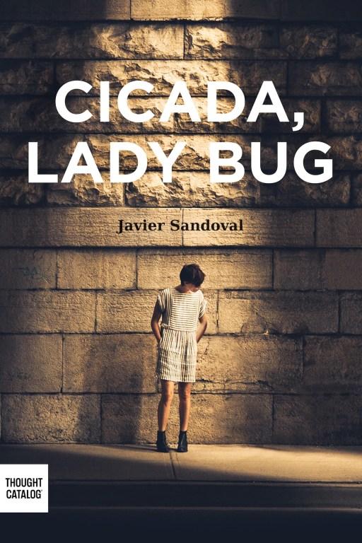 Cicada, Ladybug