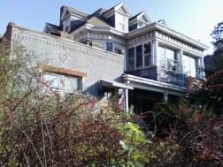Dr. Lippman's house