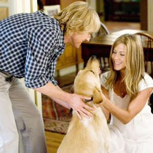The 5 Stages Every Dog Owner Will Go Through