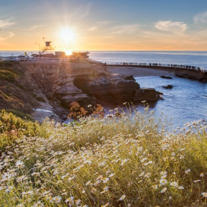 4 Things Living In Southern California Will Teach You About Life