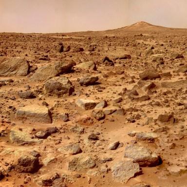 My Summer Of Love On Mars
