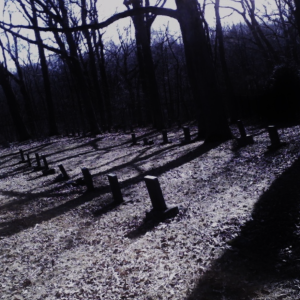 I Never Thought I'd Be So Terrified Investigating A Graveyard Until Tonight