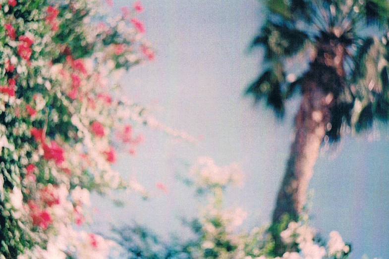 Flickr / loosingmind