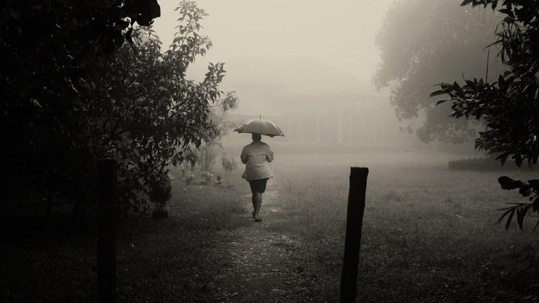 Flickr / Vinoth Chandar