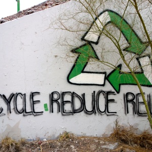 10 Easy Ways To Go Green Without Drastically Changing Your Life