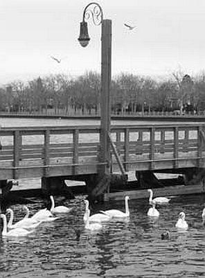 late july 74 july 26 ocean avenue bridge