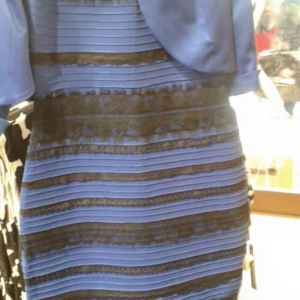 "The Terrible Truth About ""The Dress"""