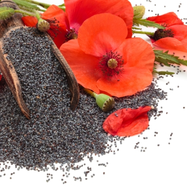 This Is What Happens When You Eat Too Many Poppy Seeds