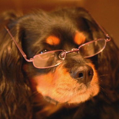 14 Struggles All Glasses-Wearers Deal With
