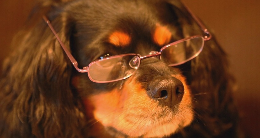 14 Struggles All Glasses-Wearers DealWith
