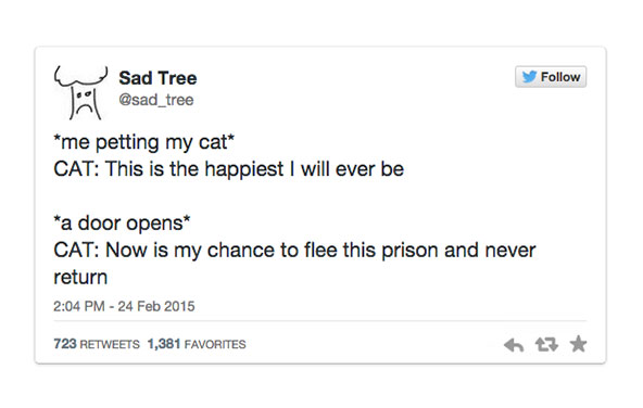 16 Truly Funny Tweets For You To Read Today