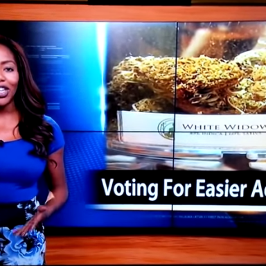 The 'F*ck It' Pro-Pot News Anchor Who Quit Live On The Air Was Raided For Pot, Should 'Go Play With Snoop Dogg'