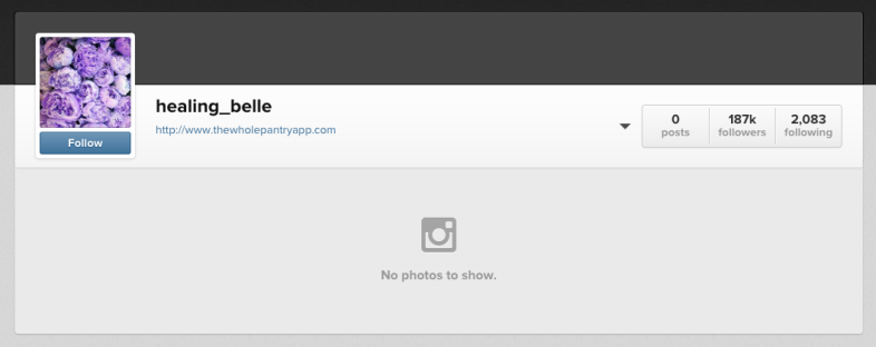 Gibson's now empty Instagram account.