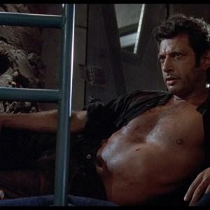 My Night With Jeff Goldblum