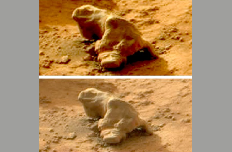 "According to the Tumblr post, after NASA was made aware of the ""iguana"" and refused to turn the rover around to investigate further, ""some began to wonder if NASA were purposefully planting life on the Red Planet."""