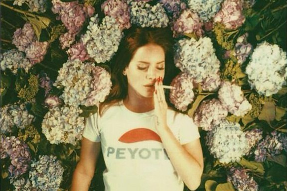 Endless Summer Reading List: 5 Great Books To Read If You Love Lana DelRey