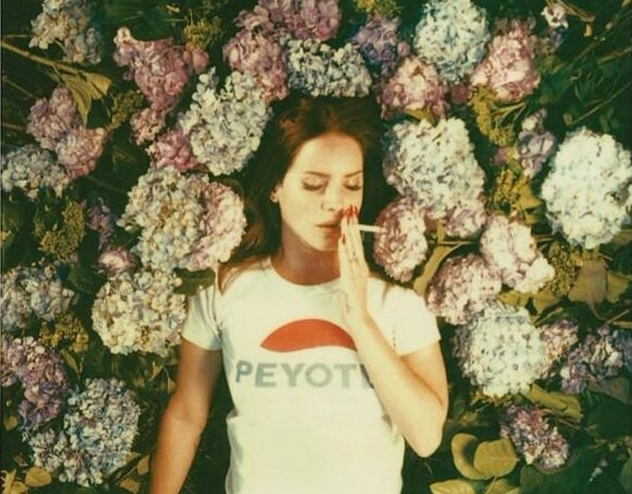 Endless Summer Reading List: 5 Great Books To Read If You Love Lana Del Rey