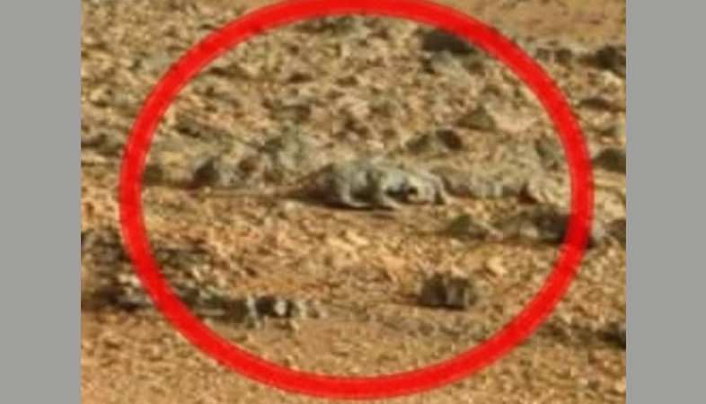"""The One Psychological Trick That's Fooled Everyone On Tumblr Into Seeing """"Faces"""" And """"Lizards"""" In NASA MarsPhotos"""