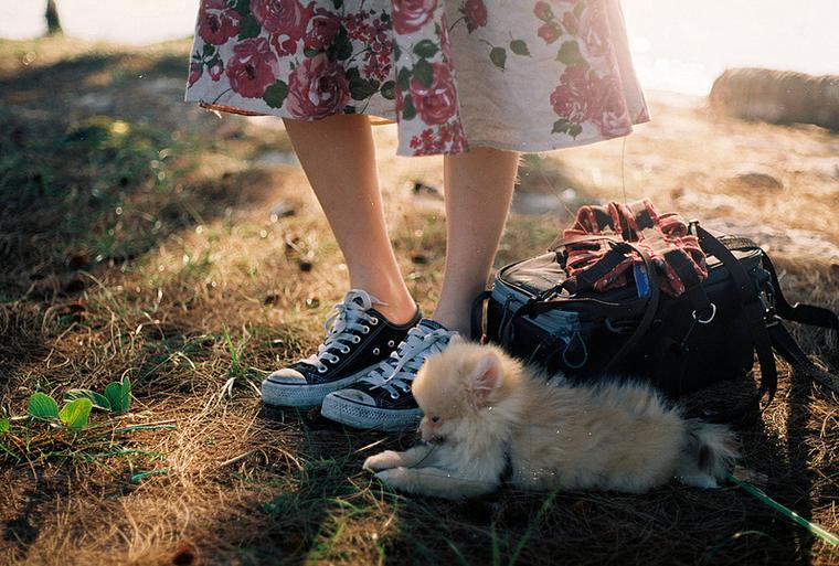 Flickr / hmoong