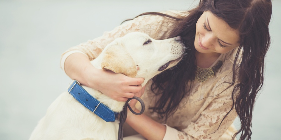 8 Simple Lessons Dogs Can Teach Our Generation About Love & Life