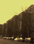 stuy town in winter