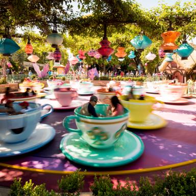 11 Major Differences Between Disneyland and DisneyWorld