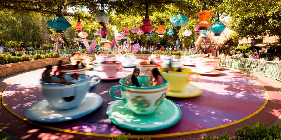11 Major Differences Between Disneyland andDisneyWorld