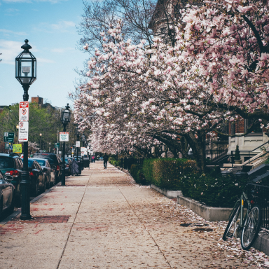 The 100 Greatest Quotes About Spring