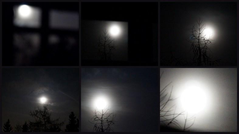 via Flickr - Von Mond Geweckt