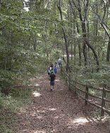 garvies point trail