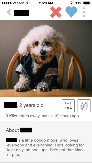 Tindog