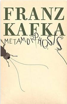 Amazon / Metamorphosis