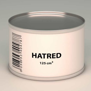 'Hate' Doesn't Explain Everything