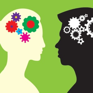 13 Real Differences Between Male And Female Brains