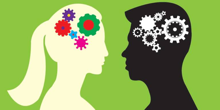 13 Real Differences Between Male And FemaleBrains