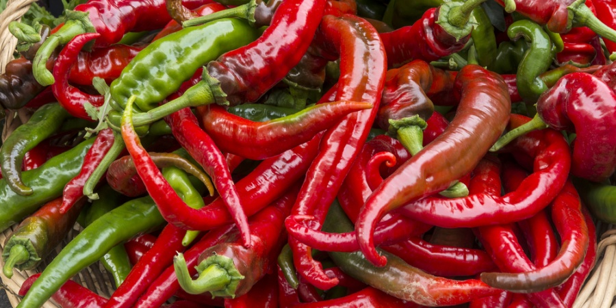 10 Glaring Signs You're Obsessed With Chilli Peppers
